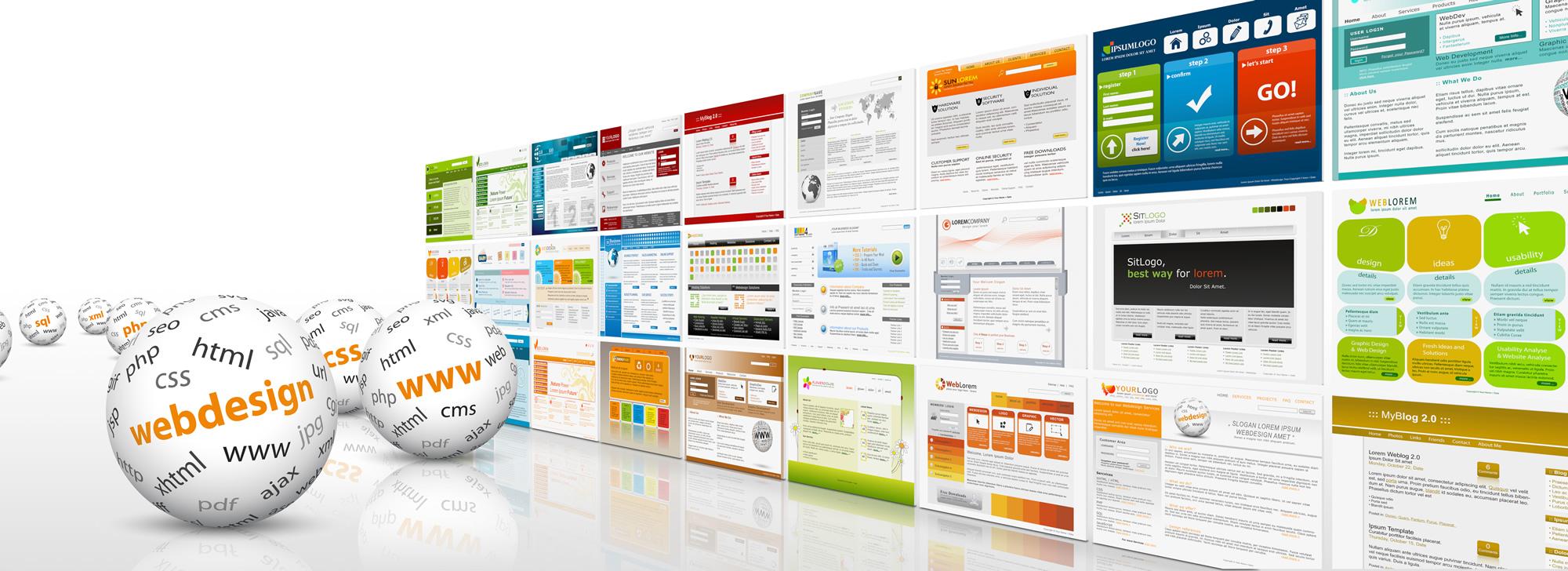 MD WEB Design